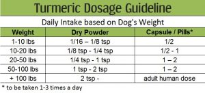 Turmeric dosage for dogs