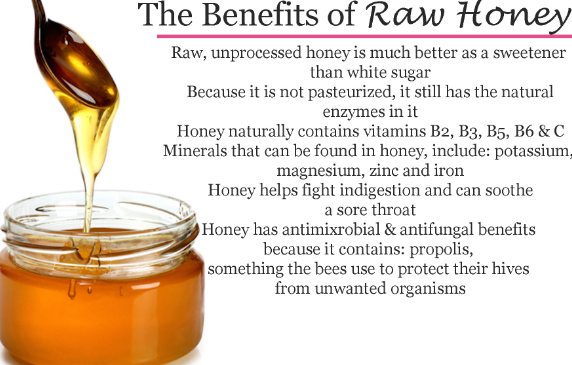 Benefits of Honey for Dogs