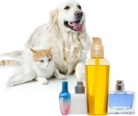 Dog Perfumes.